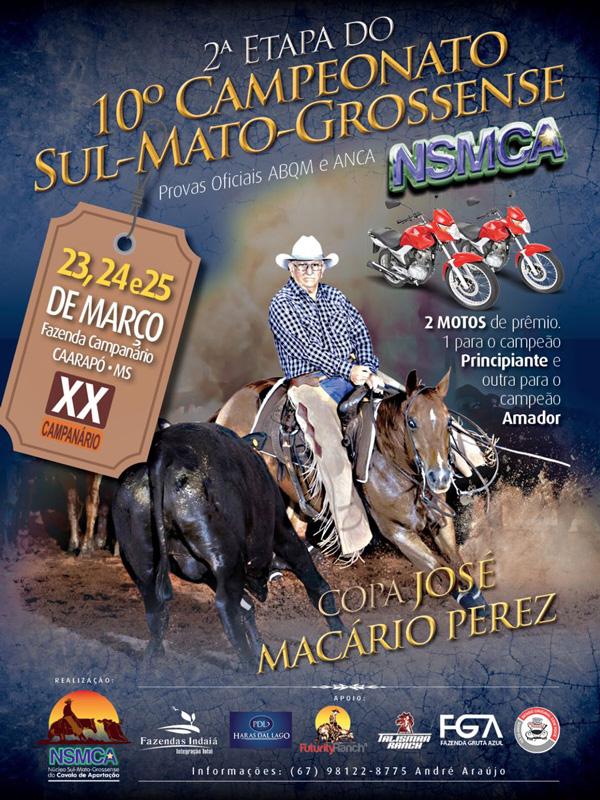 Campeonato Sul Matogrossense 2016/2017 - 2ª Etapa