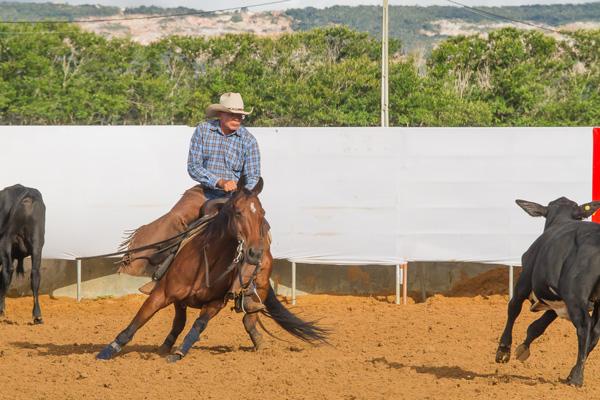 CD Rey Dual - Co Reservado Campeão Baiano 2017/2018 - Categoria Aberta Livre