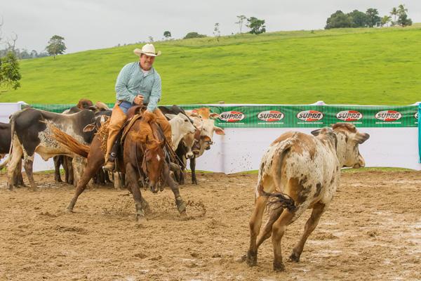 Bala no Alvo Dual - Reservado Campeão Baiano 2017/2018 - Categoria Aberta Limitada